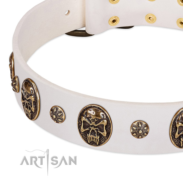 Corrosion proof hardware on natural genuine leather dog collar for your dog