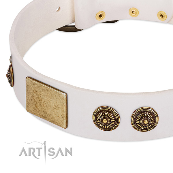 Decorated dog collar crafted for your beautiful four-legged friend