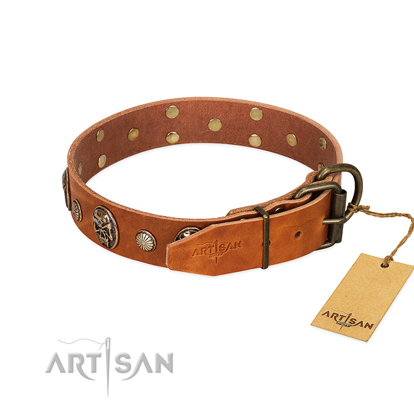 Rust resistant fittings on full grain genuine leather collar for walking your dog