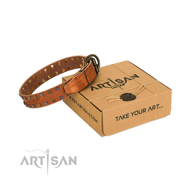 Comfortable wearing high quality full grain leather dog collar with adornments
