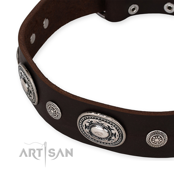 Strong full grain leather dog collar made for your beautiful dog