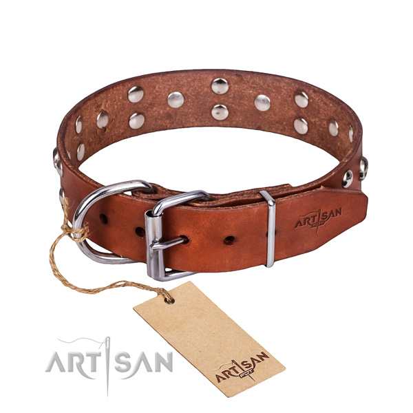 Comfy wearing dog collar of high quality natural leather with embellishments