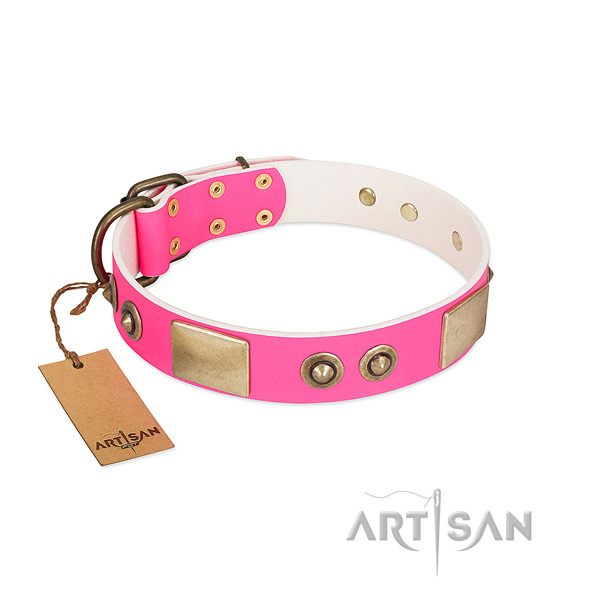 Corrosion proof embellishments on full grain natural leather dog collar for your doggie