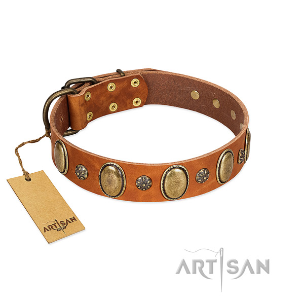 Everyday walking high quality full grain natural leather dog collar with adornments