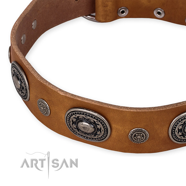 Quality leather dog collar made for your handsome canine