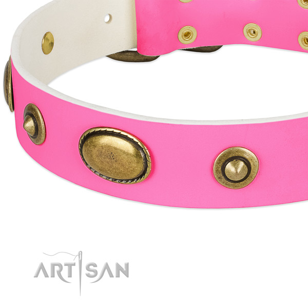 Reliable embellishments on natural leather dog collar for your canine