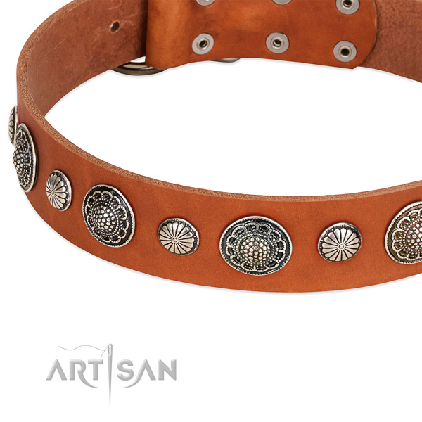 Full grain natural leather collar with corrosion proof D-ring for your handsome canine