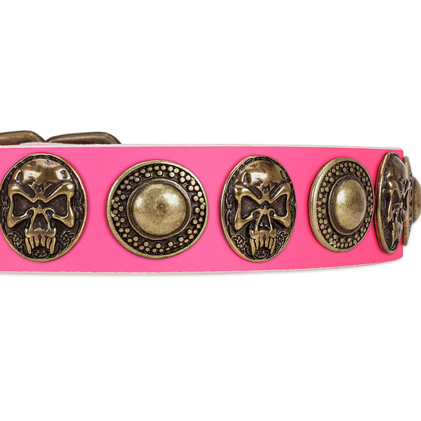 Strong decorations on leather dog collar for your dog