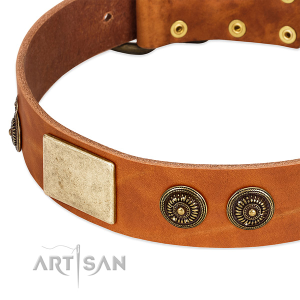 Embellished dog collar crafted for your impressive dog