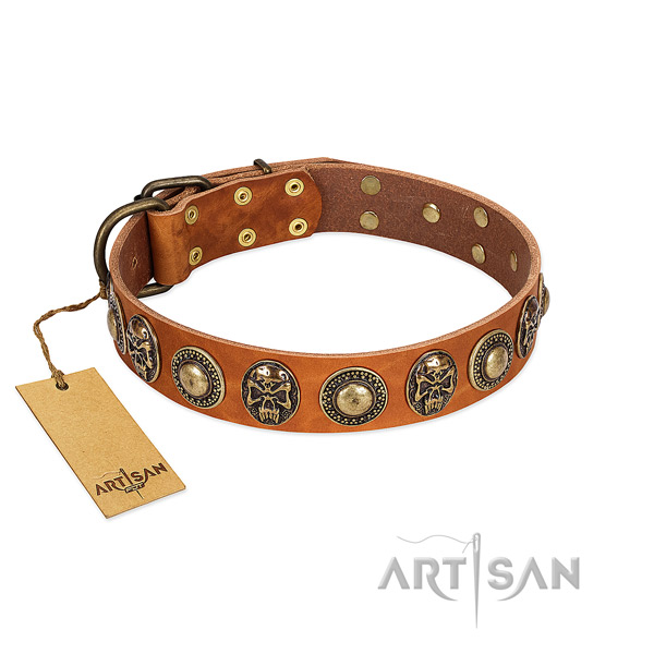 Easy adjustable full grain natural leather dog collar for daily walking your pet