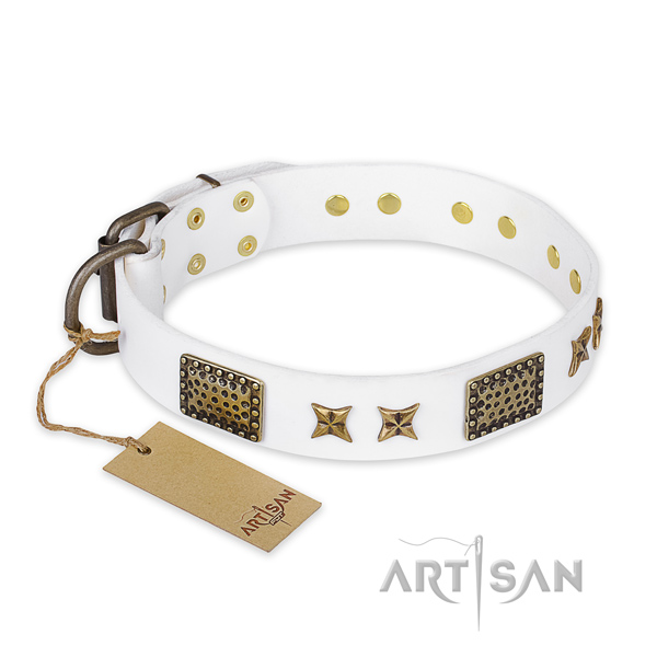 Trendy leather dog collar with rust-proof fittings