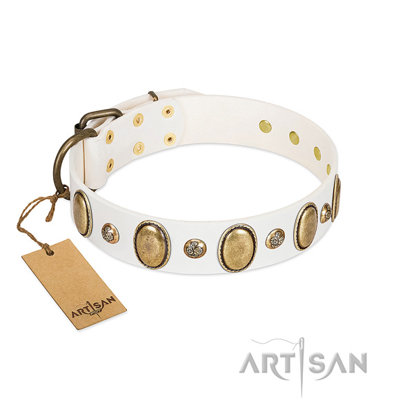 Full grain natural leather dog collar of top rate material with stylish studs