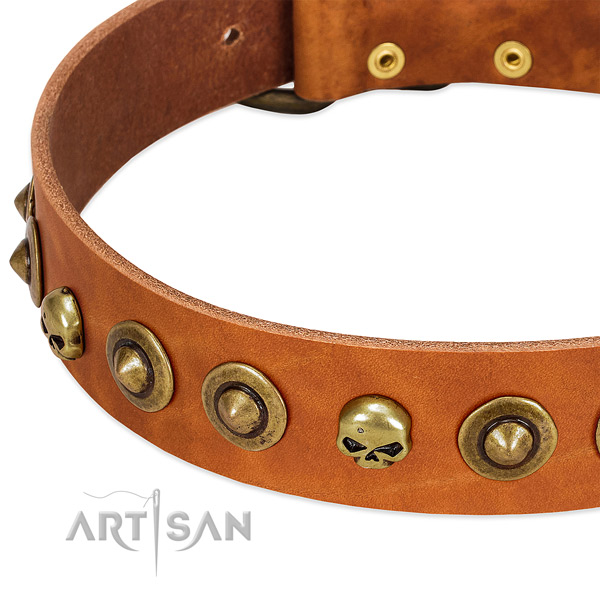 Remarkable adornments on natural leather collar for your doggie