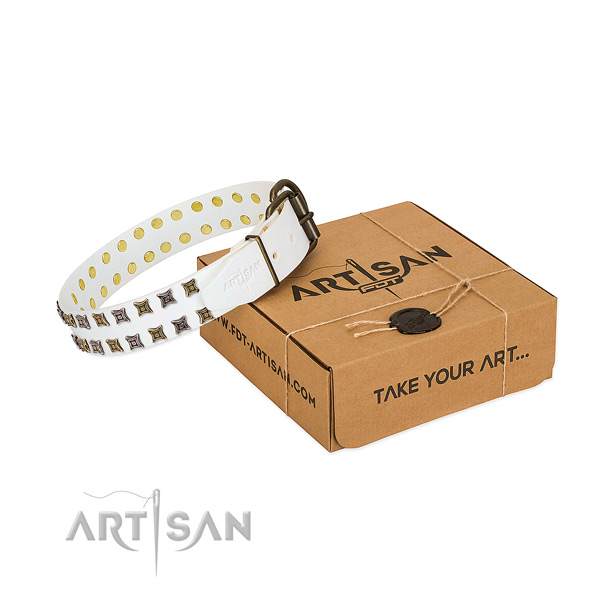 Full grain leather collar with amazing embellishments for your doggie