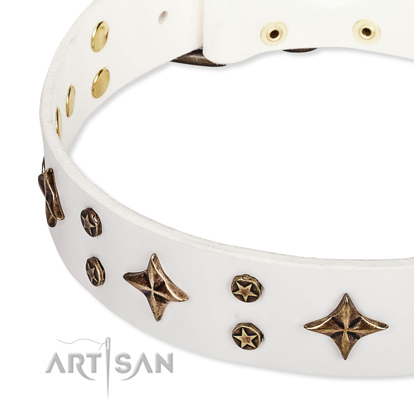 Daily use decorated dog collar of finest quality natural leather
