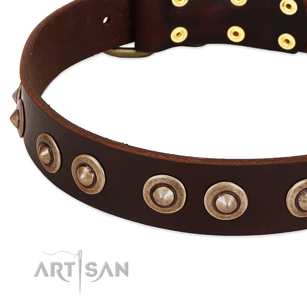 Reliable hardware on full grain leather dog collar for your four-legged friend