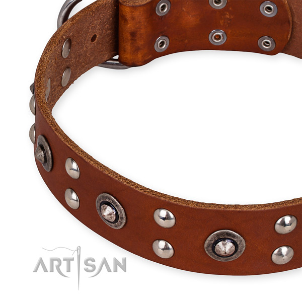 Full grain natural leather collar with rust-proof traditional buckle for your stylish canine