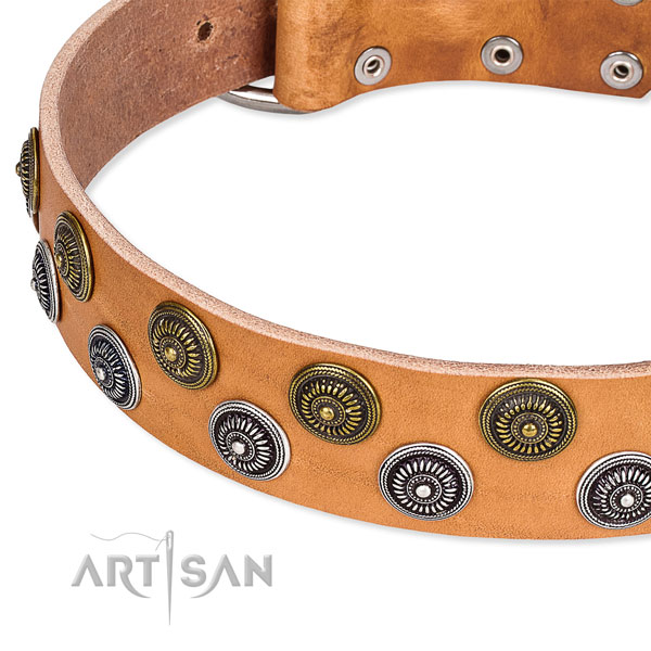 Comfortable wearing adorned dog collar of top notch full grain natural leather