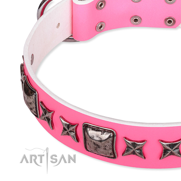 Fancy walking studded dog collar of strong full grain genuine leather