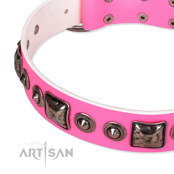 Top rate full grain genuine leather dog collar crafted for your stylish four-legged friend