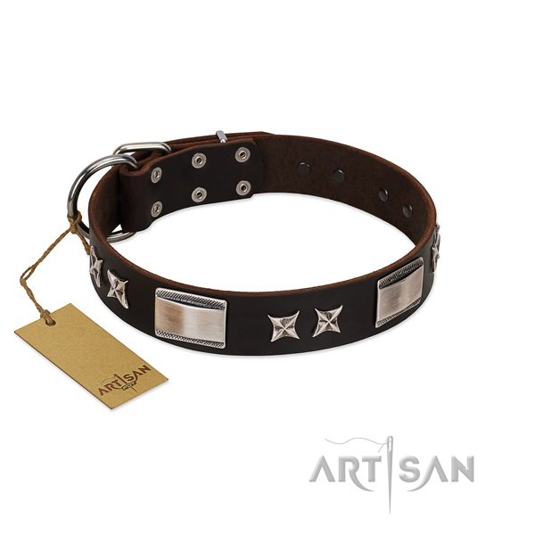 Stunning dog collar of full grain genuine leather