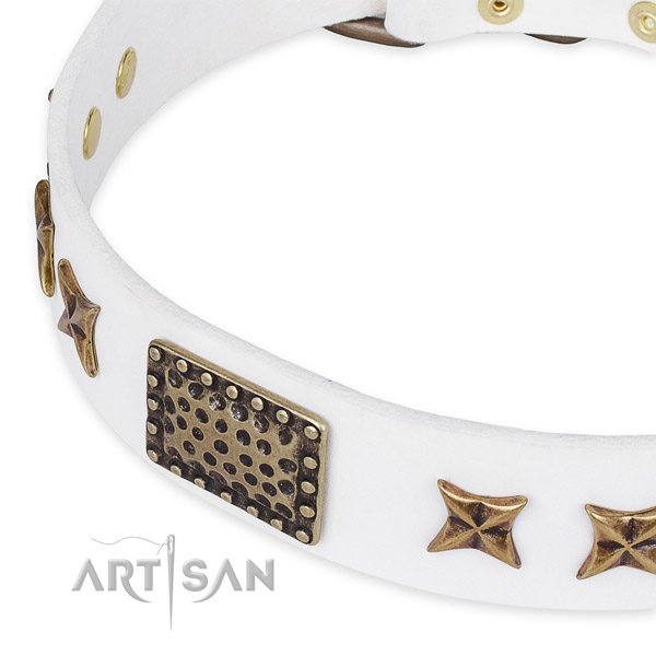 Full grain leather collar with corrosion proof hardware for your stylish pet
