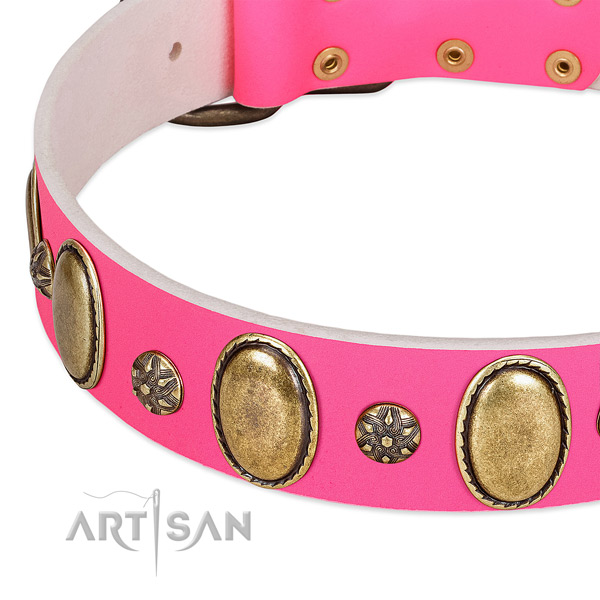 High quality leather dog collar with reliable buckle