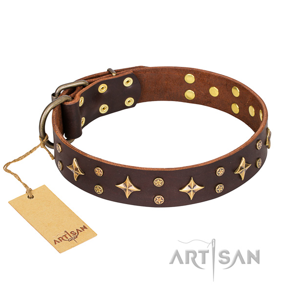 Everyday use dog collar of high quality genuine leather with decorations