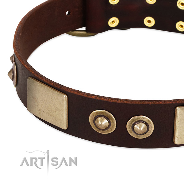 Corrosion resistant buckle on full grain genuine leather dog collar for your canine