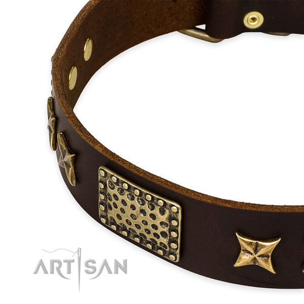 Genuine leather collar with corrosion resistant buckle for your lovely four-legged friend