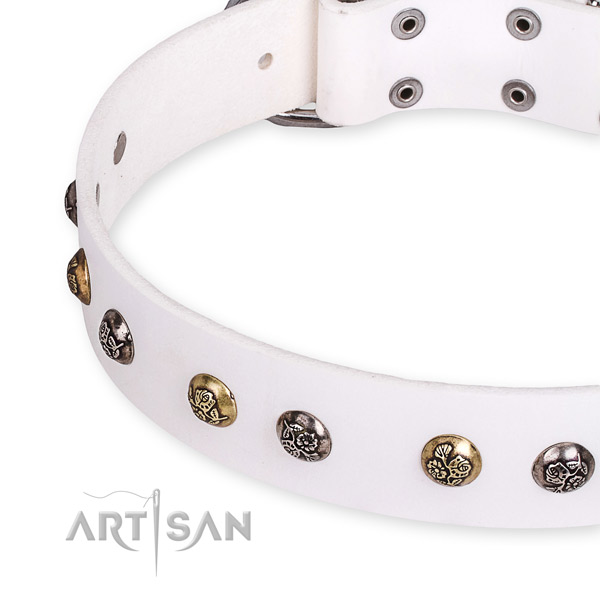 Leather dog collar with inimitable corrosion resistant embellishments