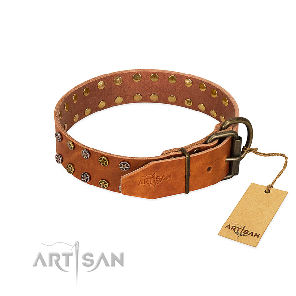 Daily use leather dog collar with unusual decorations