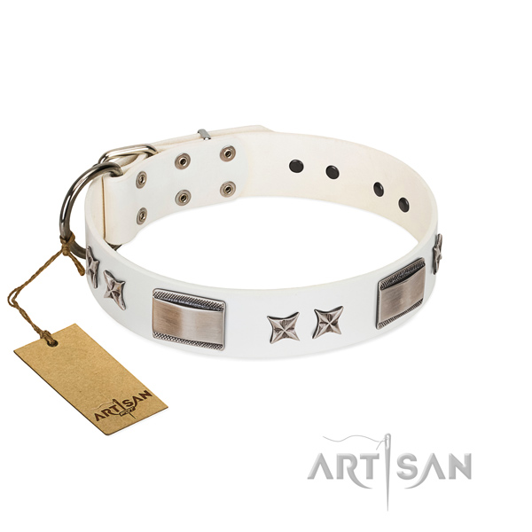 Unique dog collar of natural leather