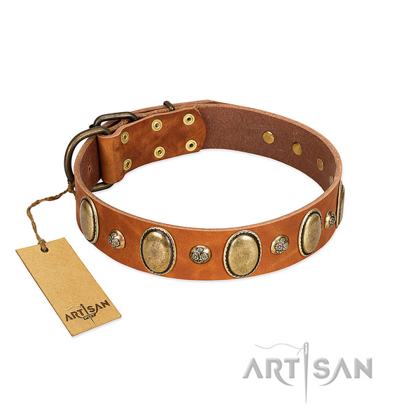 Full grain leather dog collar of gentle to touch material with awesome embellishments