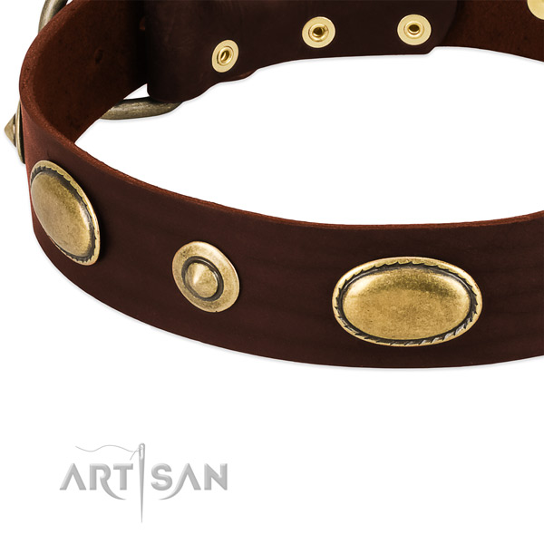 Reliable adornments on full grain leather dog collar for your pet