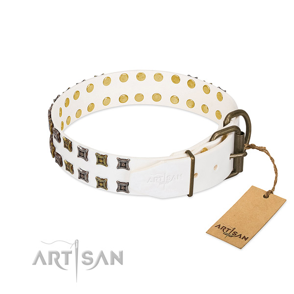 Full grain leather collar with unique embellishments for your doggie