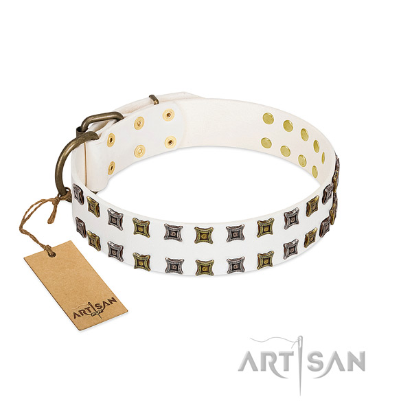 Full grain genuine leather collar with top notch studs for your pet