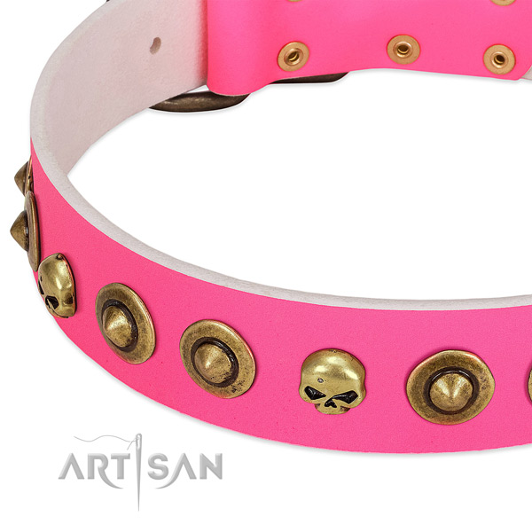 Exceptional studs on genuine leather collar for your dog