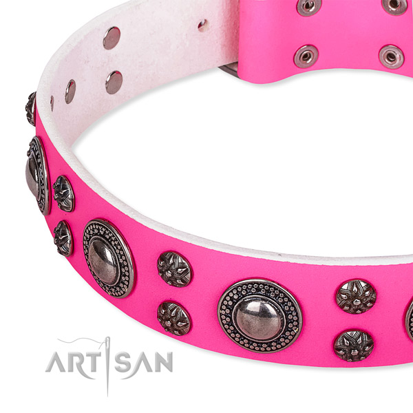 Basic training adorned dog collar of top notch genuine leather