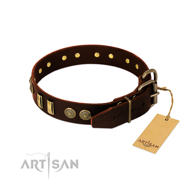 Rust resistant studs on leather dog collar for your canine