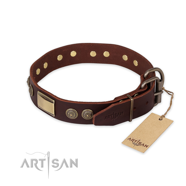 Corrosion proof traditional buckle on full grain leather collar for fancy walking your four-legged friend