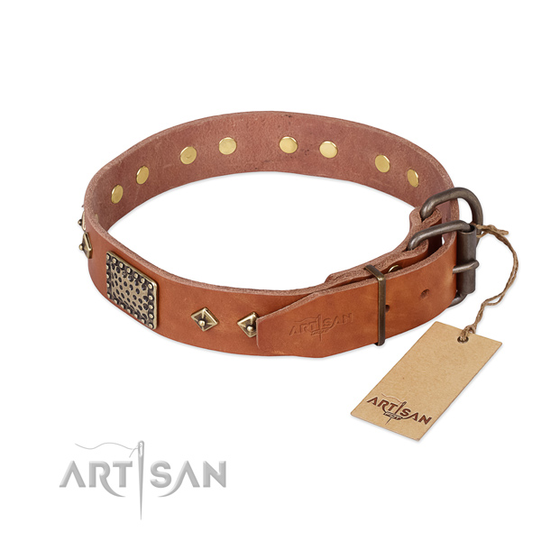 Natural leather dog collar with reliable buckle and studs