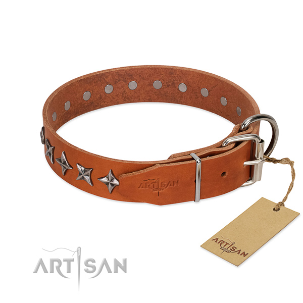 Easy wearing studded dog collar of reliable genuine leather