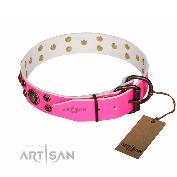 Daily walking adorned dog collar of best quality genuine leather