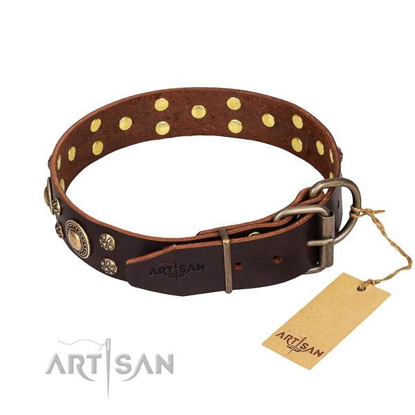 Daily use decorated dog collar of durable natural leather