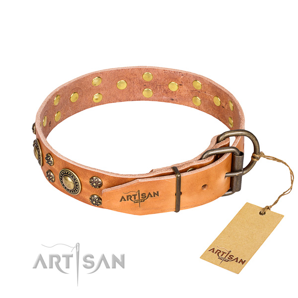 Handy use studded dog collar of high quality leather