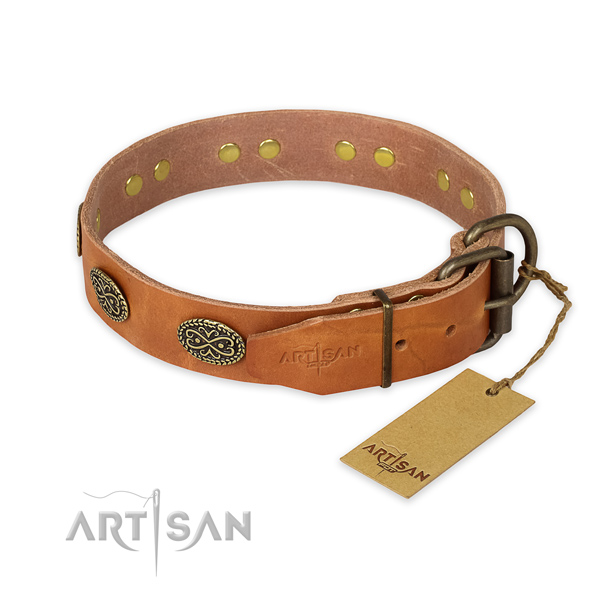Corrosion proof traditional buckle on leather collar for walking your dog