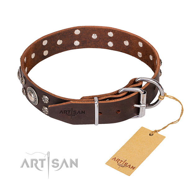 Daily walking embellished dog collar of finest quality genuine leather