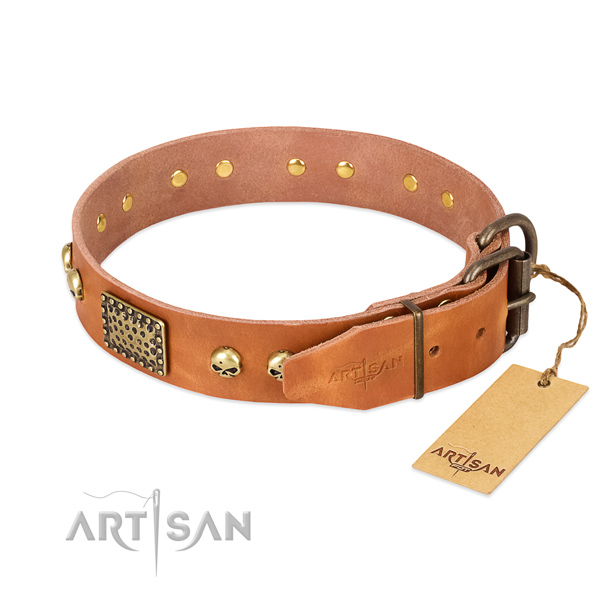 Strong traditional buckle on comfortable wearing dog collar