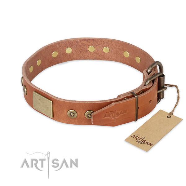 Strong traditional buckle on full grain leather collar for daily walking your four-legged friend